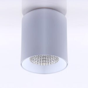 Superlight SL4411 XDL Series Surface Mount LED Downlight