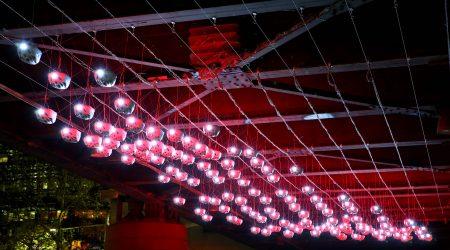 The Vivid Festival Peleton Lighting Project